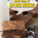 wild-kratts-brownie-title
